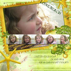 longbeach-wa-rosew